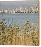Vancouver Bc Downtown From Hasting Mills Park Wood Print