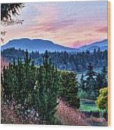 Vancouver Island Evening Wood Print