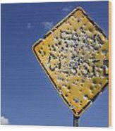 Vandalized Road Sign Many Bullet Holes Wood Print