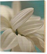 Vanilla Creme Wood Print
