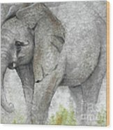 Vanishing Thunder Series-baby Elephant I Wood Print