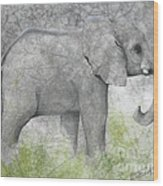 Vanishing Thunder Series-baby Elephant II  Wood Print