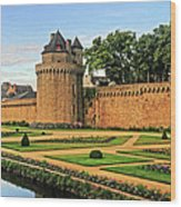 Vannes In Brittany France Wood Print