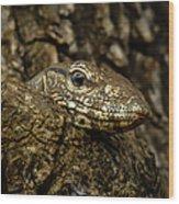 Varanus In Tree Wood Print