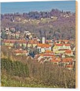 Varazdinske Toplice - Thermal Springs Town Wood Print