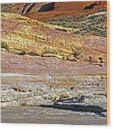 Variety Of Land Wood Print