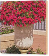 Vase Of Petunias Wood Print