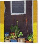 Vases On The Doorway Wood Print