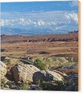 Vast Desert Landscape Wood Print