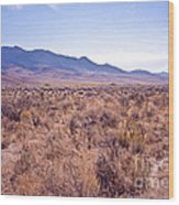 Vast Desolate And Silent - Lyon Nevada Wood Print