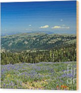 Vast View And Lupine Wood Print