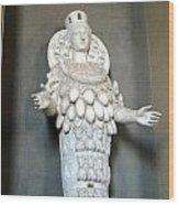Vatican Museum Wood Print