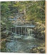 Vaughan Woods Stream Wood Print