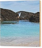 Vega Baja Beach 4 Wood Print
