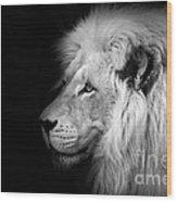 Vegas Lion - Black And White Wood Print by Ian Monk