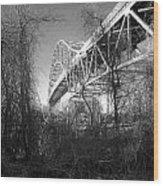 Vegetation Bridge Wood Print