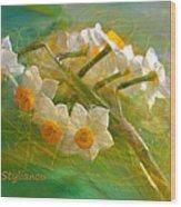 Veil On  Narcissus Wood Print