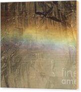 Veiled By A Rainbow Wood Print