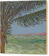 Veiled Horizon Wood Print