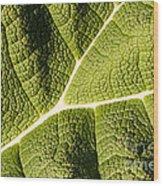 Veins Of A Leaf Wood Print