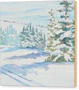 Veiw From Mt. Werner Wood Print