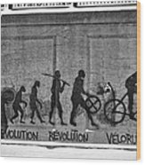 Velorution Wood Print