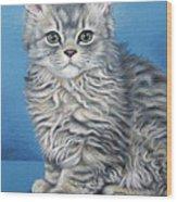 Velvet Kitten Wood Print