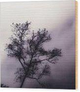 Velvet Mist Wood Print by Tyler Lucas