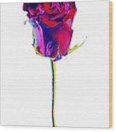 Velvet Rose Bud Wood Print
