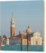 Venetian Dove Wood Print