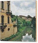 Venice Green Wood Print