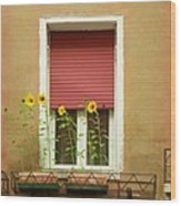 Venice Italy Yellow Flowers Red Shutter Wood Print