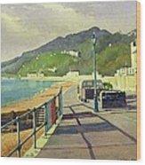 Ventnor, Isle Of Wight Wood Print