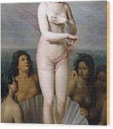 Venus Anadyomene Wood Print