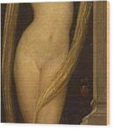 Venus And Cupid Wood Print