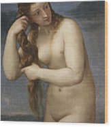 Venus Rising From The Sea Wood Print