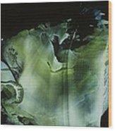 Venus Subaqua Wood Print