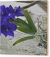 Vera The Vanda Wood Print