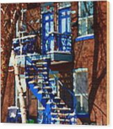 Verdun Duplex Stairs With Birch Tree Montreal Winding Staircases Winter City Scene Carole Spandau Wood Print