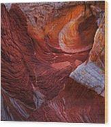 Vermilion Eye Wood Print