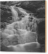 Vermont Forest Waterfall Black And White Wood Print