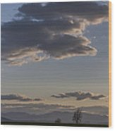 Vermont Grass Field Trees Clouds Adirondack Mountains New York Wood Print