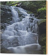 Vermont New England Waterfall Green Trees Forest Wood Print