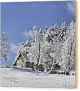 Vermont Winter Beauty Wood Print