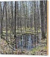 Vernal Pool 2 Wood Print