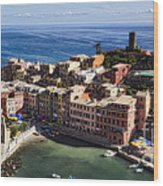 Vernazza From Above Wood Print