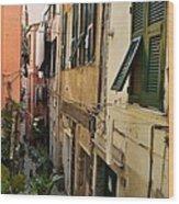 Vernazza Street Wood Print