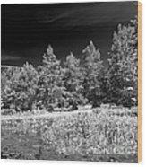 Vernon Lake Five Wood Print