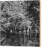 Vernon Lake Four Wood Print
