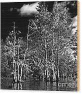 Vernon Lake Trip Wood Print